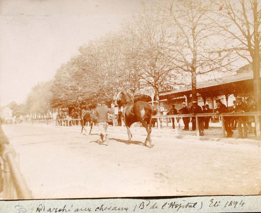 2 Marché aux chevaux, boulevard de l'Hôpital, 1894.jpg