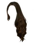 hair_PNG5621.png