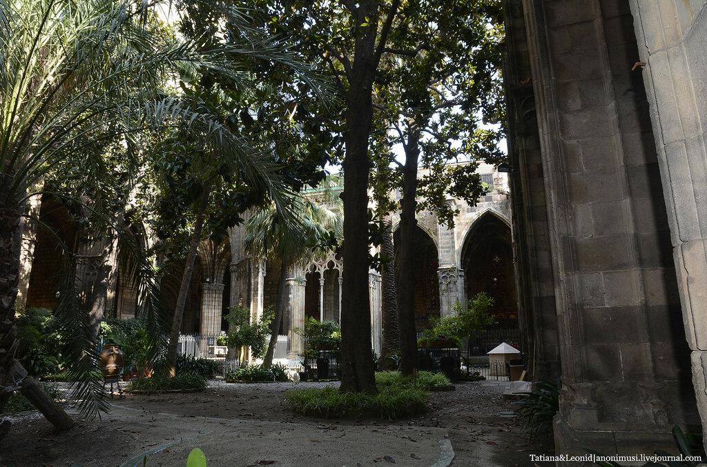 Собор Святого Креста и Святой Евлалии или кафедральный собор в Барселоне