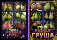 Журнал Такая разная груша  / Жегалин Н. В.