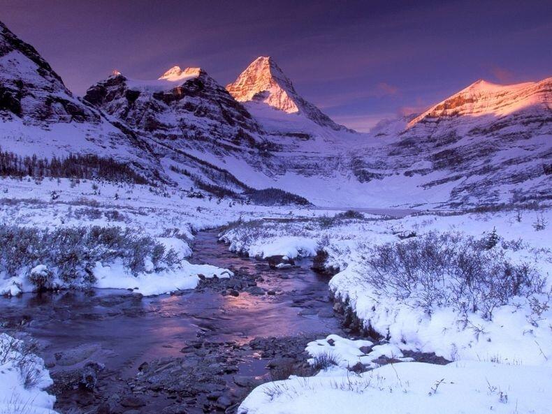 Ссылка на Красивая зима для отправки друзьям по ICQ и MSN.