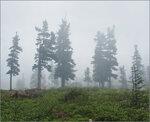 В горы на 30 дней 0_1242_b1600925_S