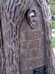 Дерево желаний! Да будет услышано Ваше желание!