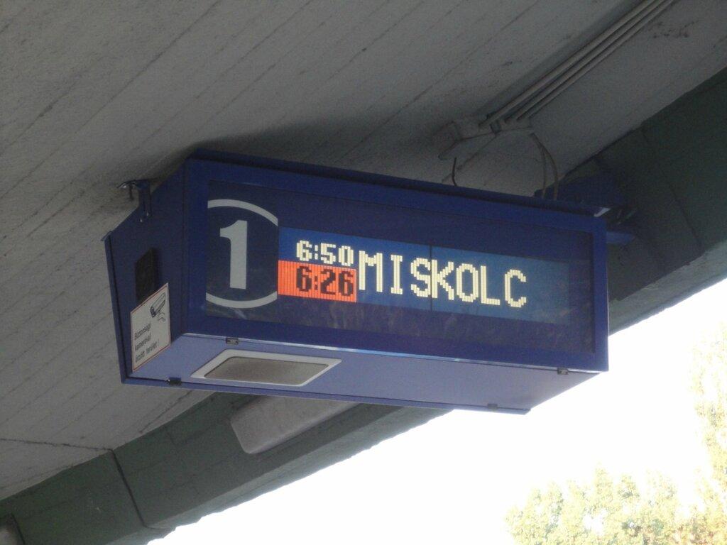 DSC01202.JPG