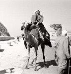 Гиза, январь 1965 г.