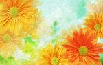 Цветочки и листочки
