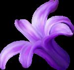 NLD Addon Flower (3).png