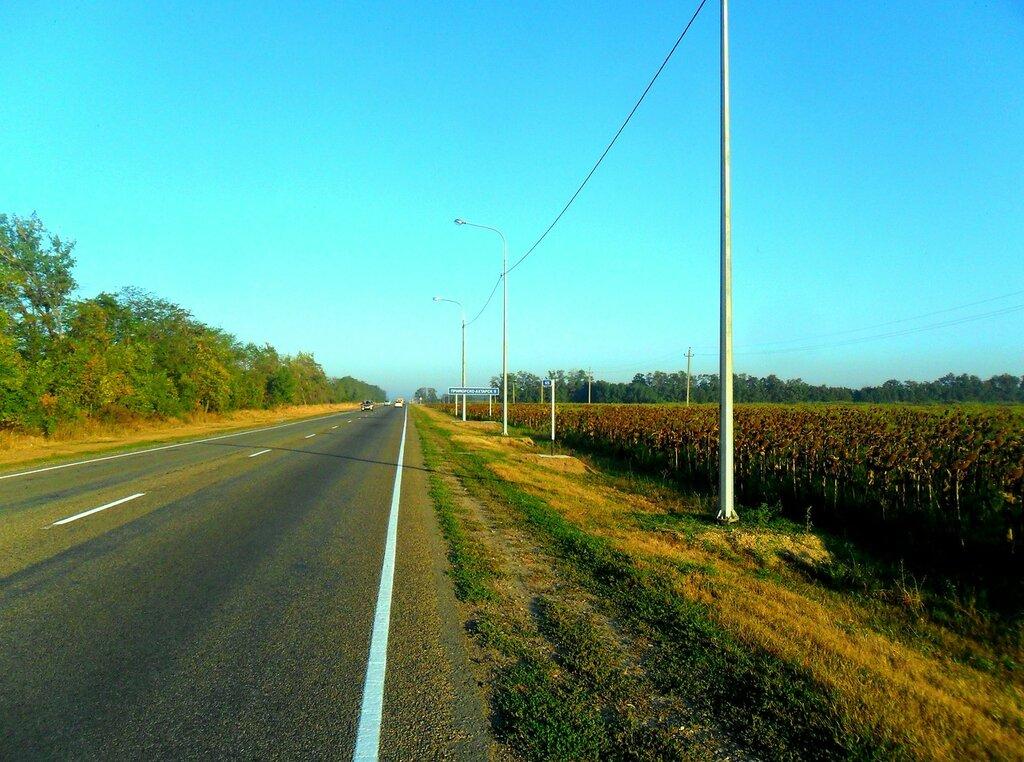 У поля, на обочине шоссе ... SAM_3594.JPG
