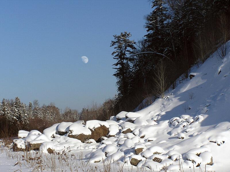 Зима в тайге фото 8