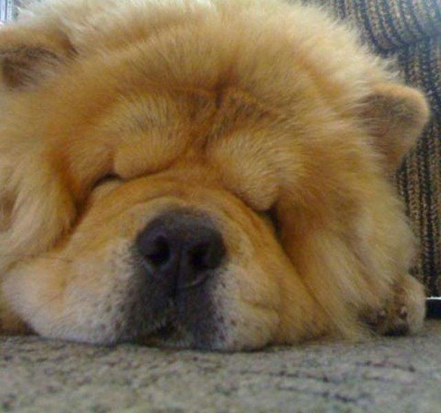 Раздеть спящую фото 18 фотография