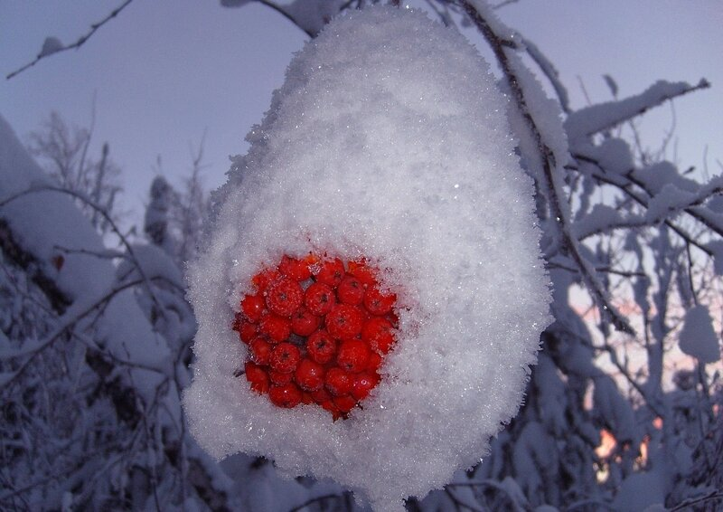 Сказка про снежную шапочку :-))
