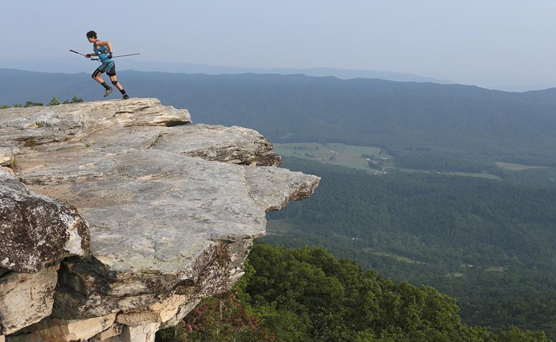 Многие ученые посвящают свою жизнь работам, связанным с дикой природе национального парка Йеллоустоу