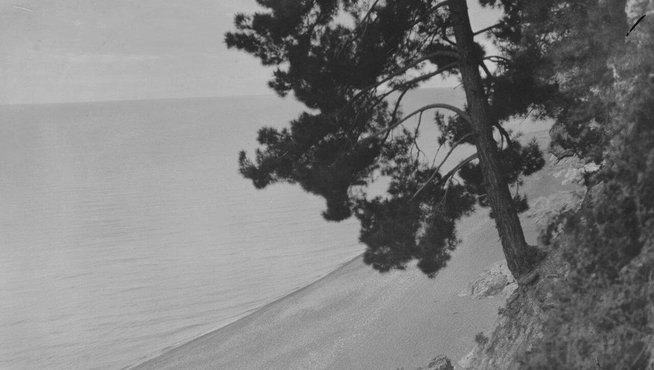 Гагры. Берег Черного моря