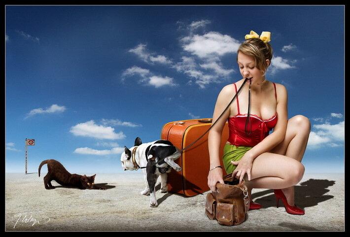девушки и их животные