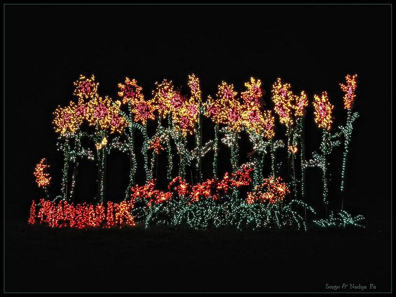 Garden d'Lights 2008 - 057