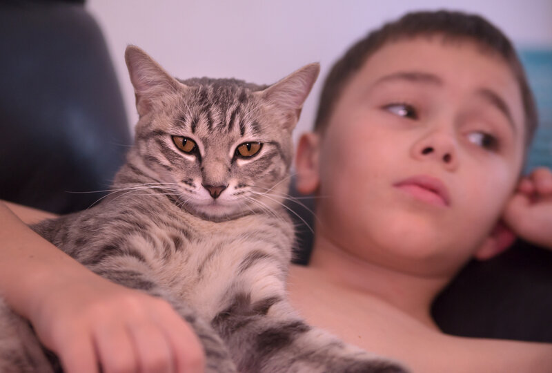 Миша и Эмойка
