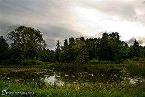 Пруды парка