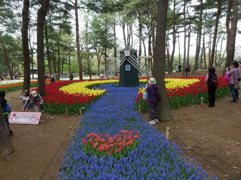 Живописный японский парк Хитати Кайхин 0 1422ca 15929096 orig