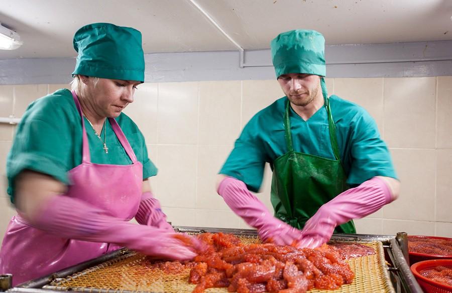 Рыбных предприятий на Сахалине много, несколько десятков. Есть крупные игроки на этом рынке, которые