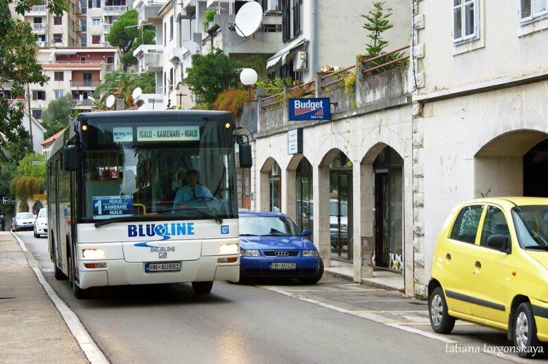 Автобсу на херцегновской улице