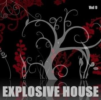 Explosive House Vol.9 (2009)