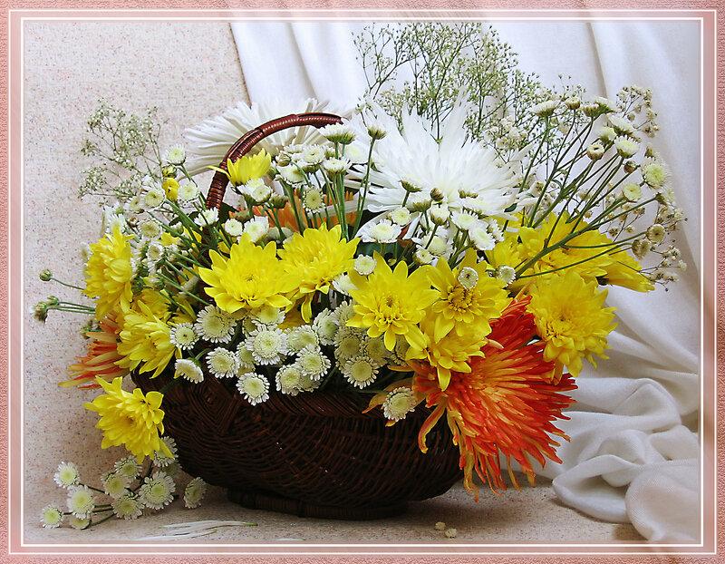 Картинка с днем рождения хризантемы