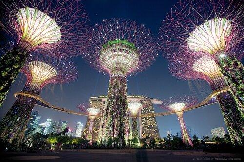 Достопримечательности Сингапура - чудо сады