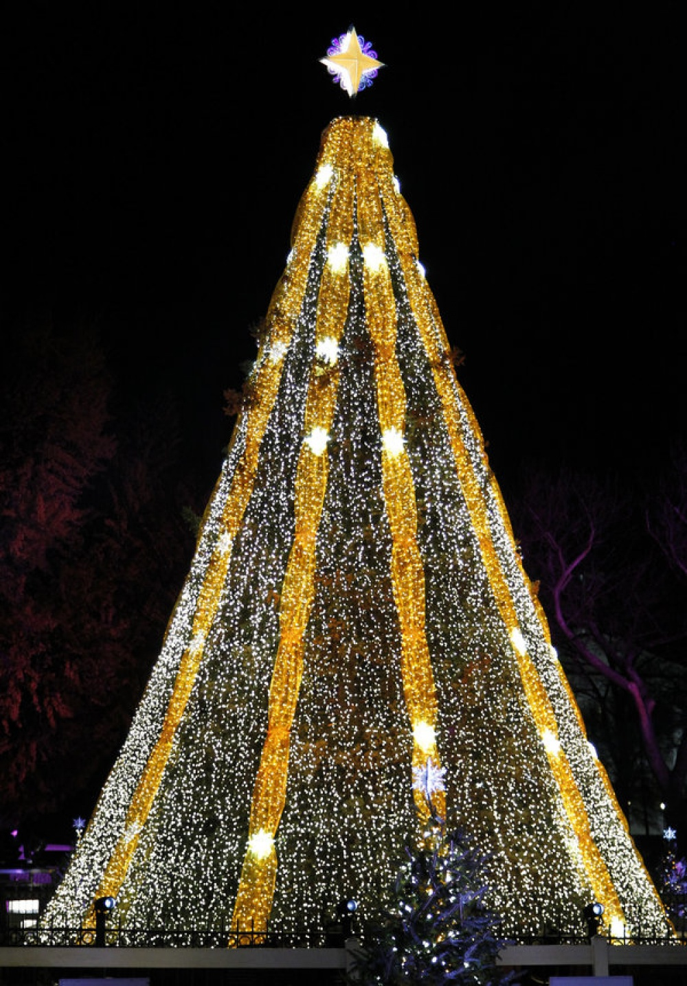 Национальная рождественская елка. Чтобы попасть напраздник, она проделала путь отАляски, преодолев