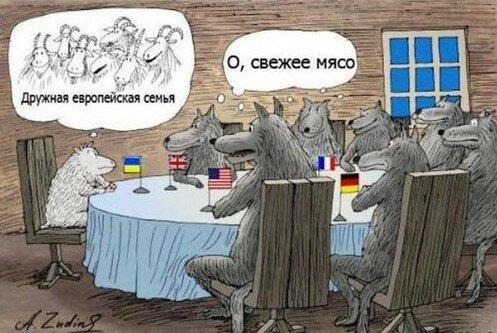 Хроники триффидов: Последствия местечковой русофобской идеологии