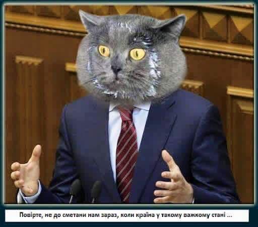 Выборы в Раду пройдут этой осенью или весной 2017 года, - Сюмар - Цензор.НЕТ 8166