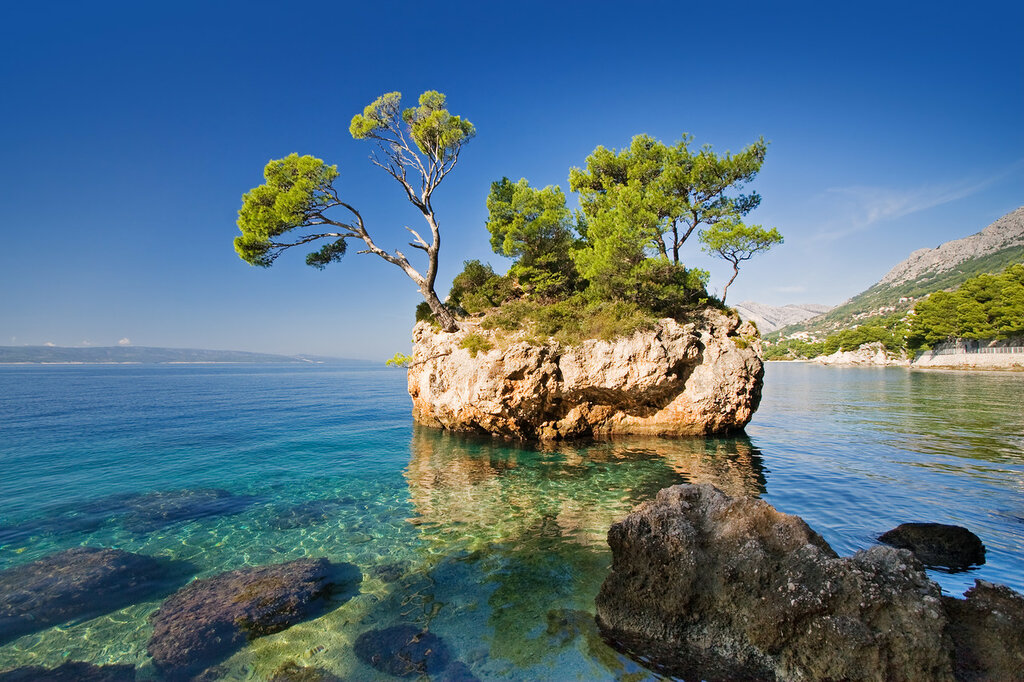 nature-tree-rock-sea-view-image-paradise-travel-hd-wallpaper