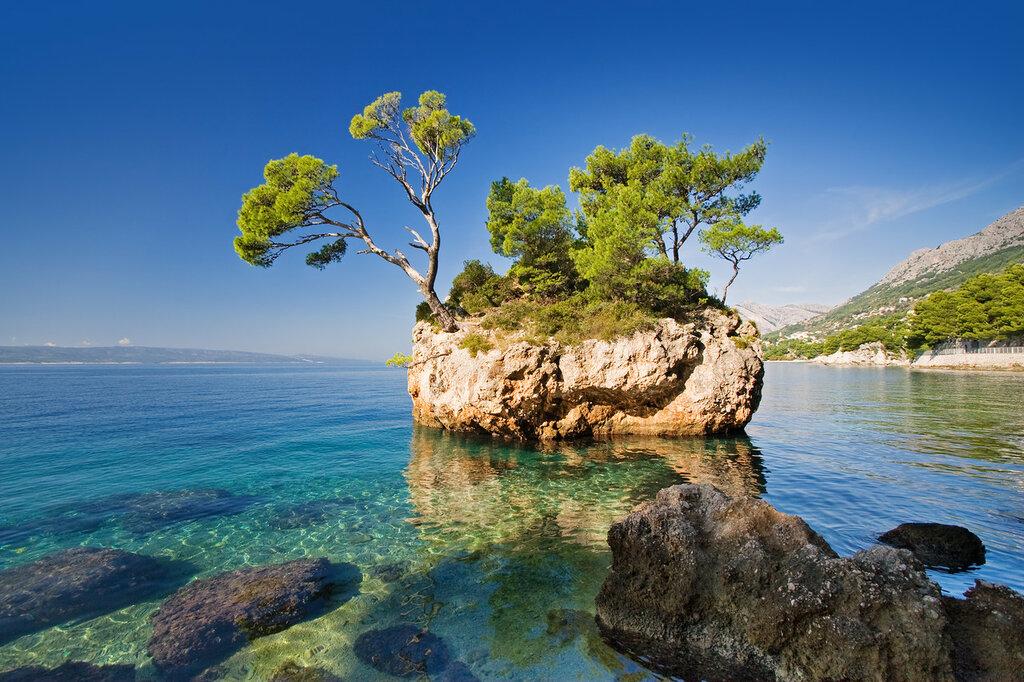 nature-tree-rock-sea-view-image-paradise-travel-hd-wallpaper
