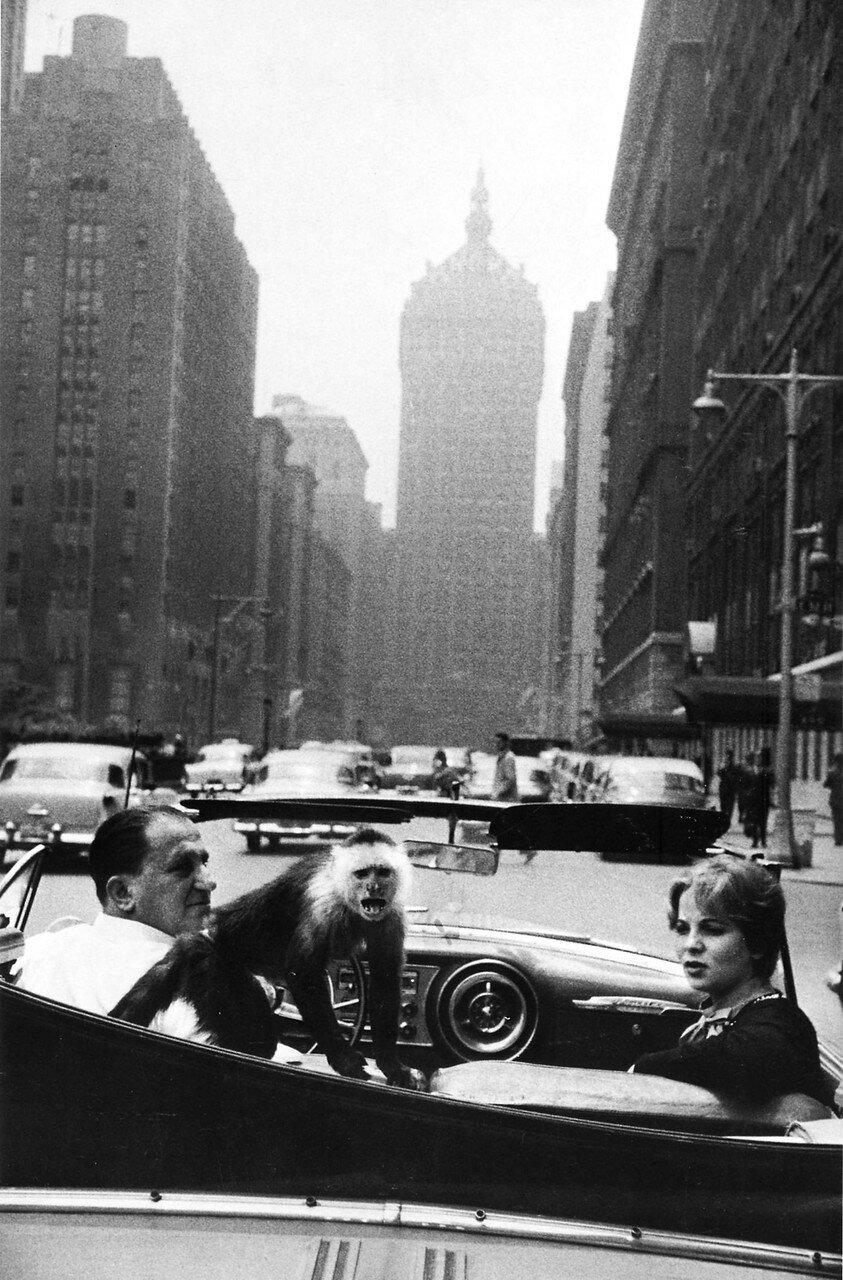 1959. Парк-авеню, Нью-Йорк