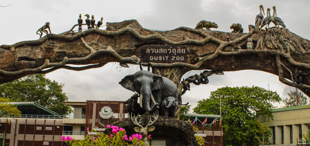 Зоопарк в бангкоке как добраться