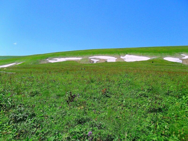 Мезмай-Оштен, Кавказ, туризм, лето 2010, фото, летние картинки, снег, травы, Лагонаки