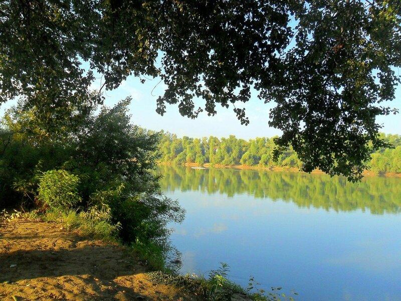 Утром, на берегу Протоки ... SAM_3485.JPG