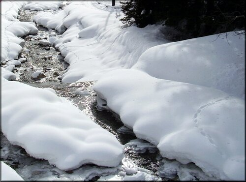 белый-белый снег по весне растаял