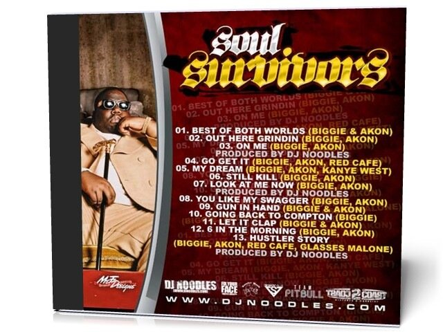 DJ Noodles Presents Akon & Biggie - Soul Survivors (2009)