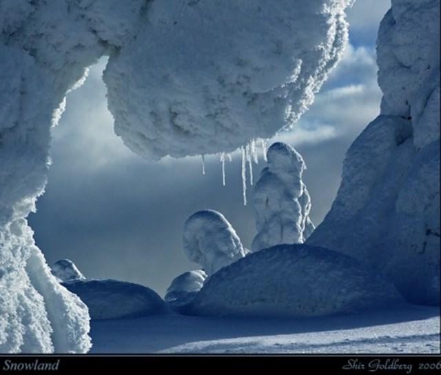 100 самых красивых зимних фотографии: пейзажи, звери и вообще 0 10f598 44dce276 orig