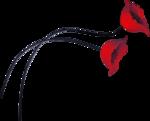 fleurs2cy0203.png