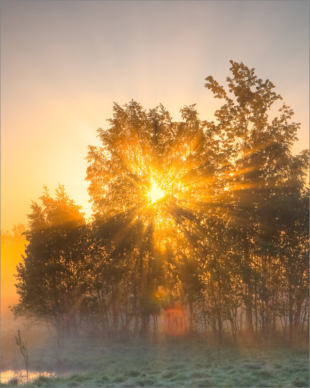 вновь поздравление с первыми лучами солнца православии давалось имя