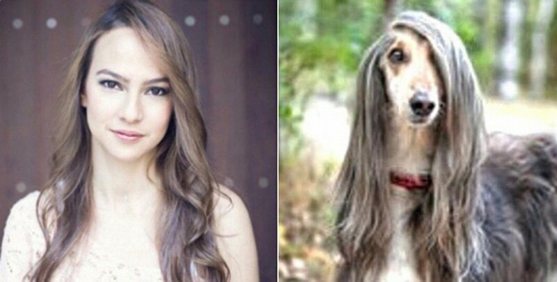 Одна морда с собакой. Двойники людей и животных в Instagram