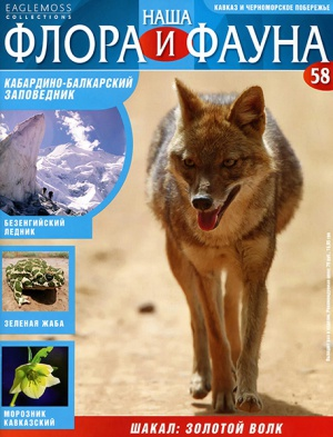 Журнал Наша флора и фауна № 58 2014