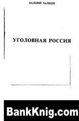 Книга Уголовная Россия pdf    1,4Мб