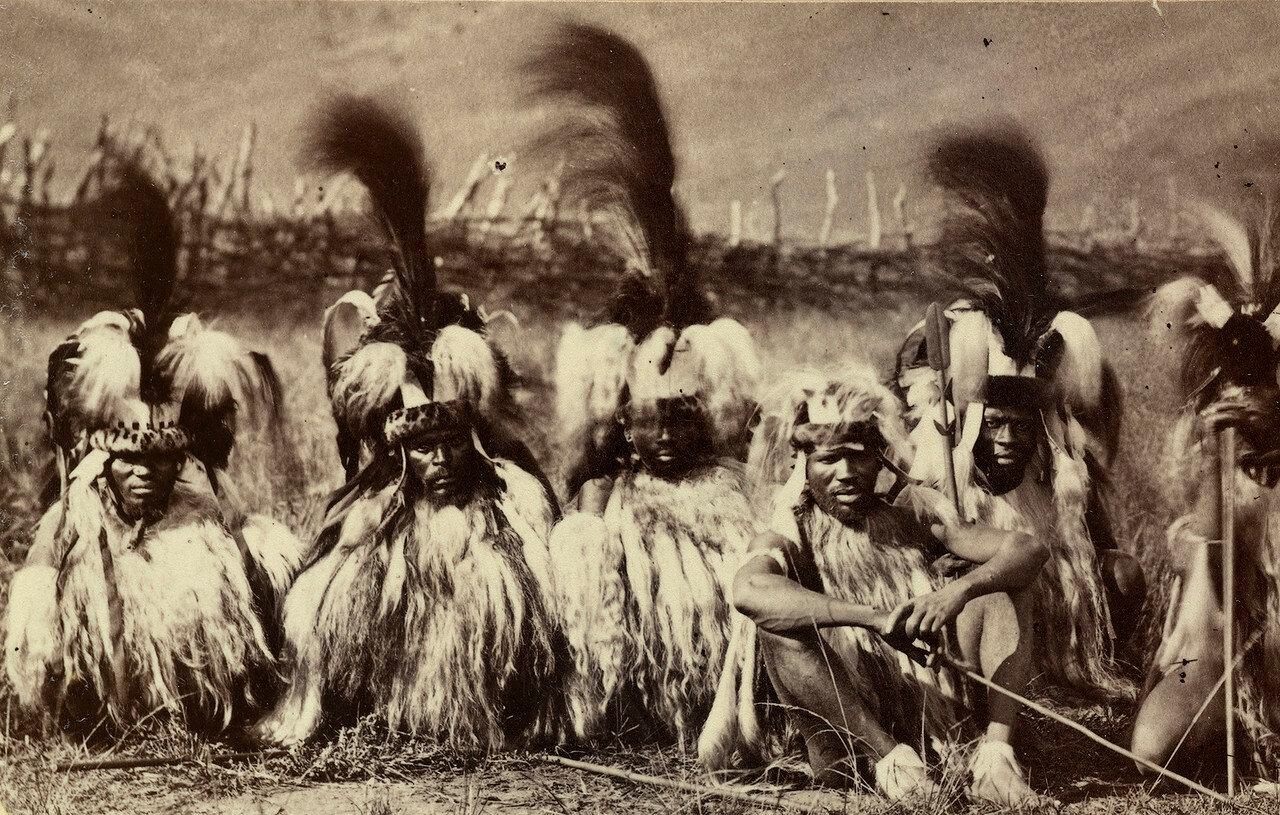 Зулусские воины в торжественном облачении