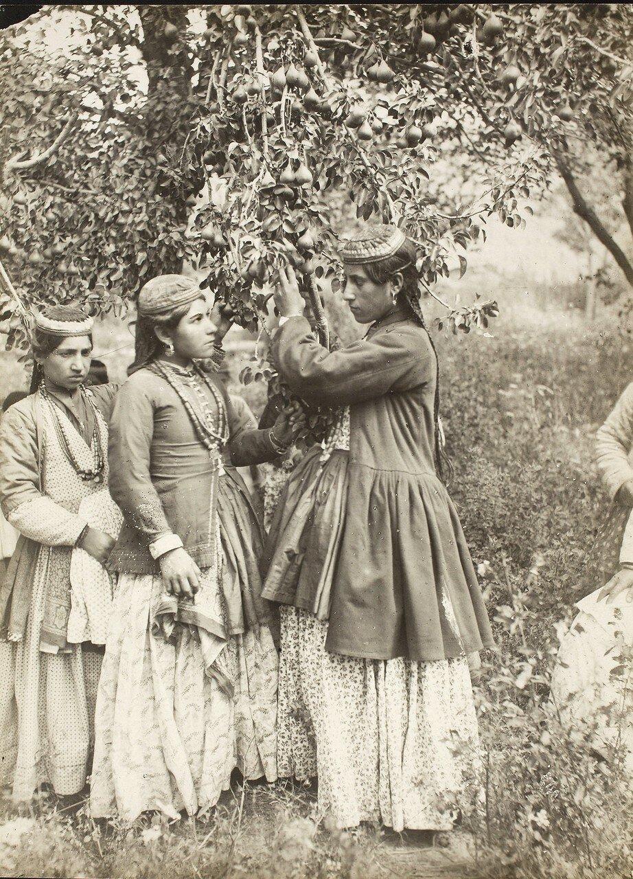 Армянские девушки в Урмии