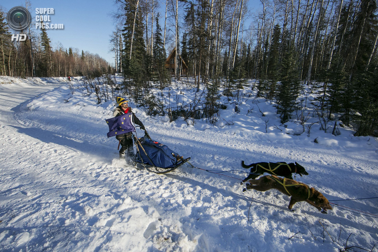 США. Уиллоу, Аляска. 2 марта. Хью Нефф и его упряжка. (REUTERS/Nathaniel Wilder)