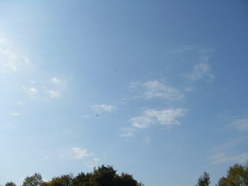 В небе птица...  12 октября 2008, под Горячим Ключом, на слёте (141).JPG