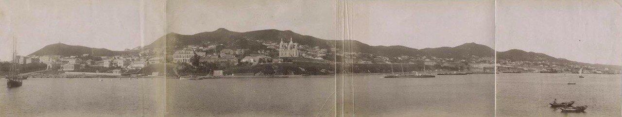 Общий вид. 1880