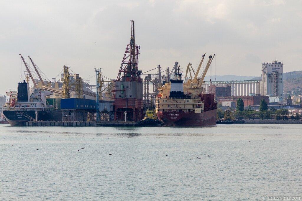 Портовые сооружения и суда, Новороссийск